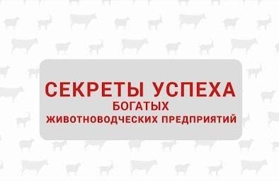 Секреты успешных животноводческих предприятий